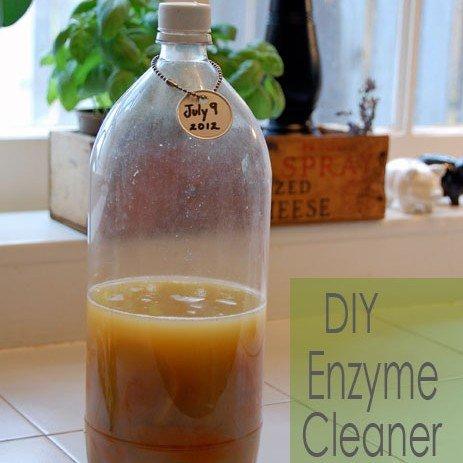 diy enzyme cleaner
