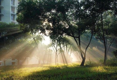 Sunshine. Solar products