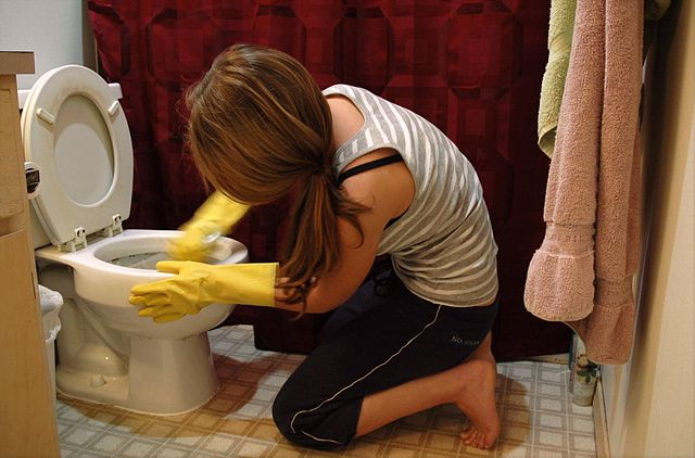 woman cleaning toilet. going green in the bathroom