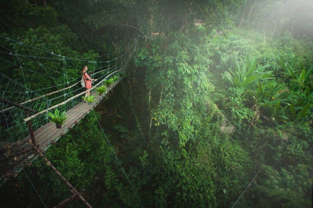 Girl on footbridge in forest