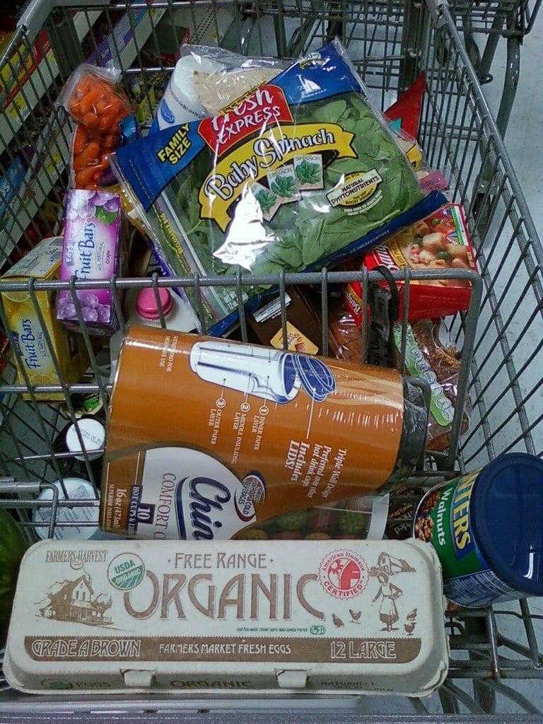 grocery shopping cart. Food sustainability