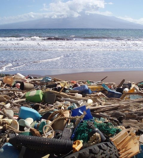 Plastic pollution on Kanapou Bay. use less plastic
