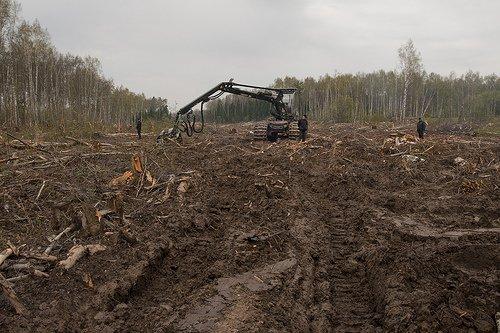Burning dump. environmental stewardship