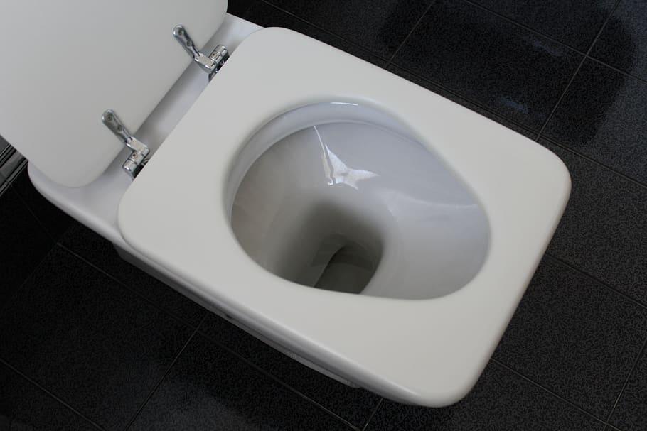 Toilet. what not to flush down the toilet