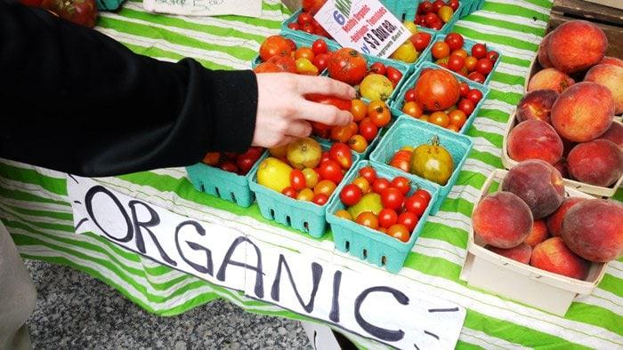 organic produce. food sustainability