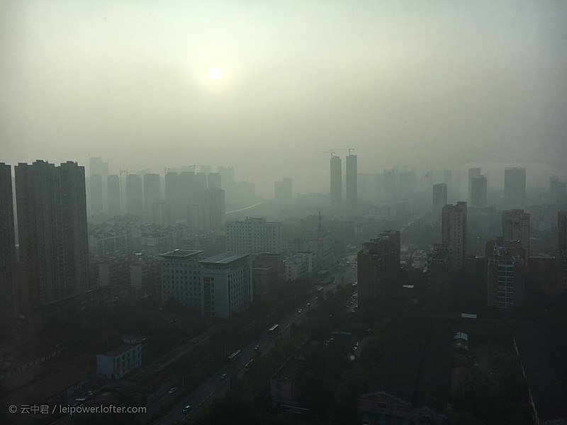 Smog. environmental degradation