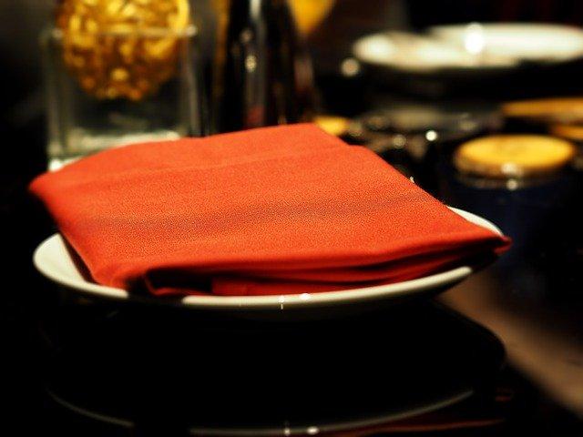 Cloth napkin. paper towel substitute